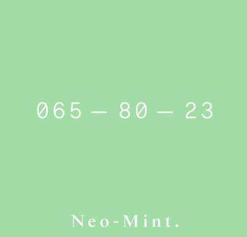 neo-mint 065-80-23